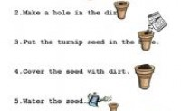 tpr教学法教材种植物的过程